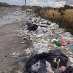 """Paternò, comitato """"Paternò c'è"""" trova soluzione per emergenza rifiuti: esperto esterno (pagato?)"""