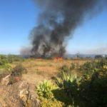 Incendi in Sicilia, pompieri in azione