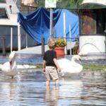 Maltempo: esondati torrenti, emergenza nel Lecchese