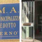 Paternò. l'AMA avvia censimento con distinzione fornitura