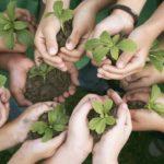 Ambiente, 5 segnali positivi per un 2021 migliore